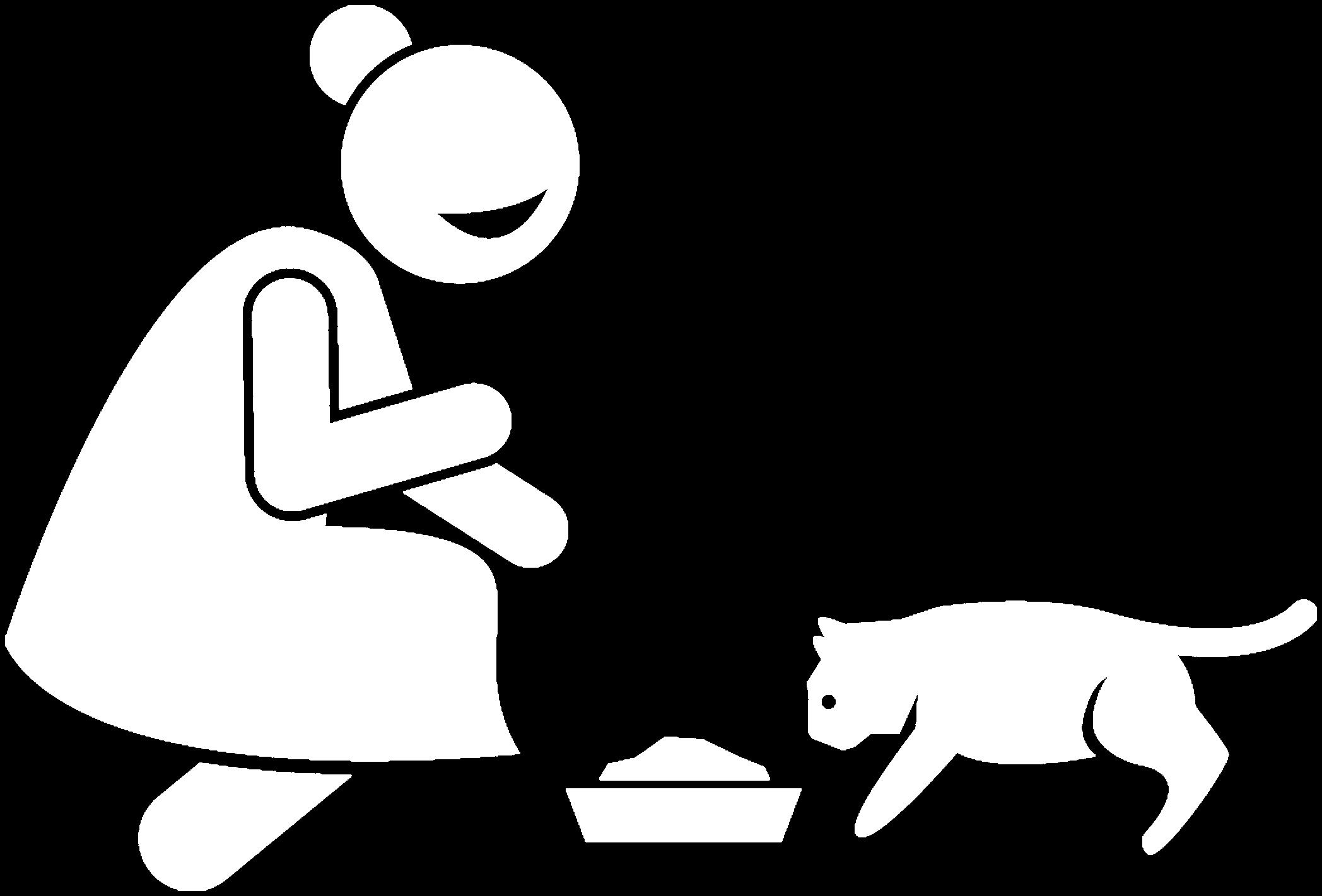 if_cat-010_2877202